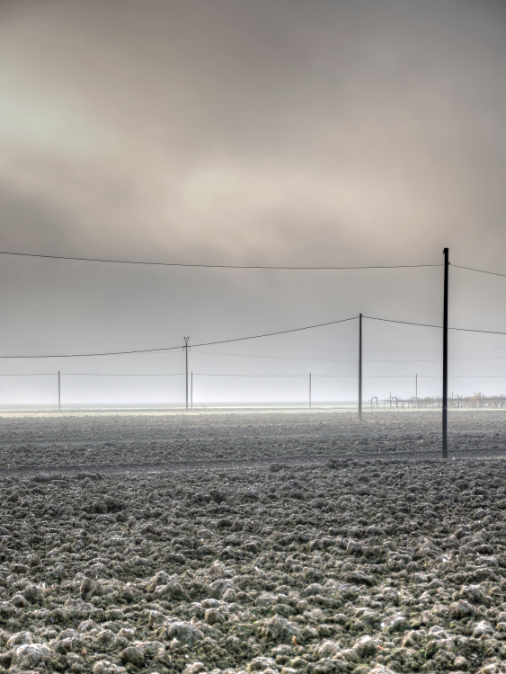 Morning Mist with Frost - La Grande, Nonantola, Modena, Italy - November 17, 2011
