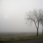 Foggy Sunrise - Near Castelfranco Emilia, Modena, Italy - January 7, 2013