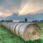 Round bales at Sunset - Rubiera, Reggio Emilia, Italy - May 29, 2015